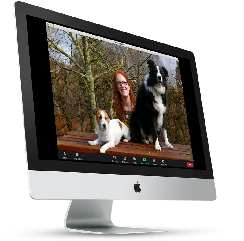 apdt online zoom webinars dog training